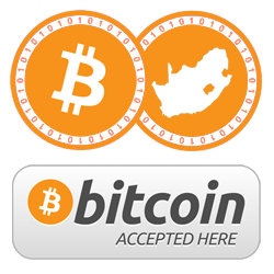 What is this Bitcoin thing everyone is talking about? | KAYA FM