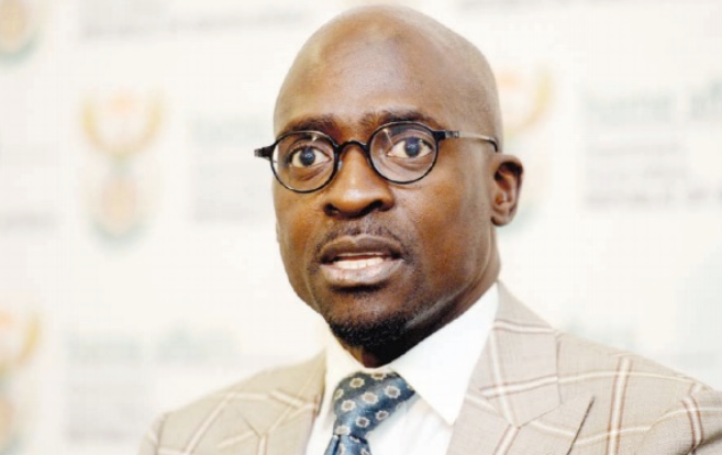 are the guptas south african citizens home affairs malusi gigaba