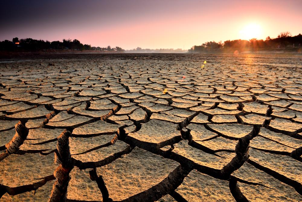 Western Cape drought to blame for recession – Economist