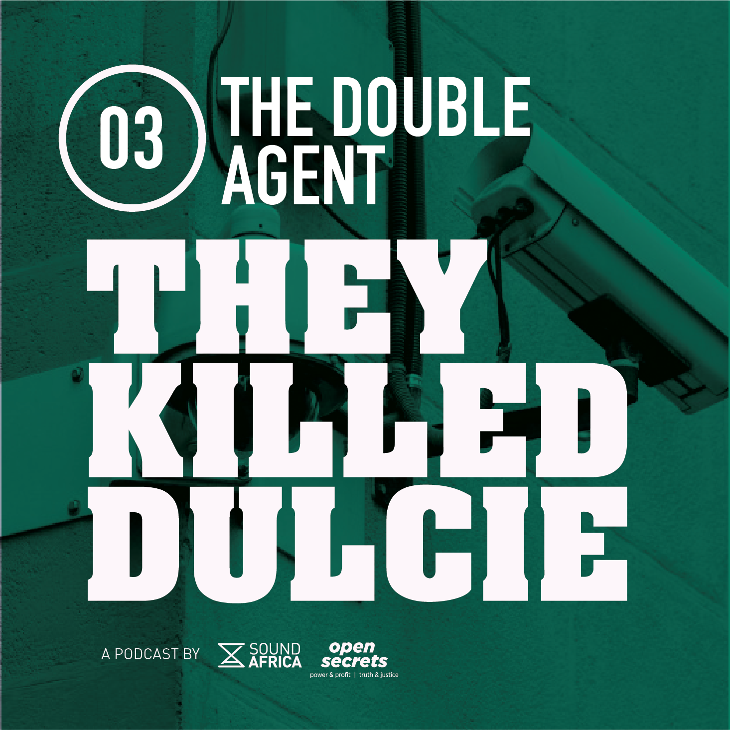They Killed Dulcie – Double Agents